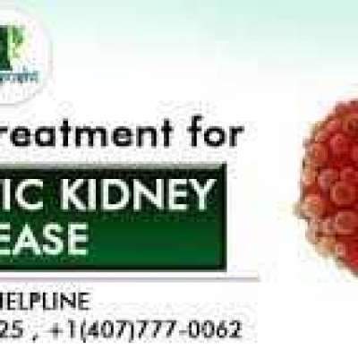 polycystic kidney disease treatment in ayurveda Profile Picture